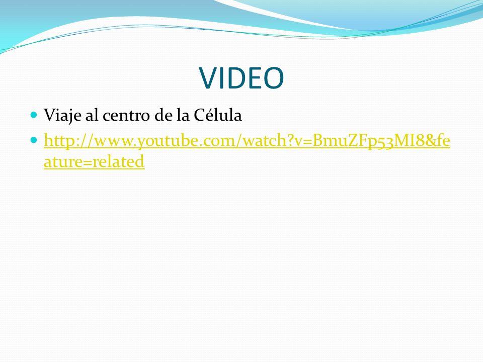 VIDEO Viaje al centro de la Célula http://www.youtube.com/watch?v=BmuZFp53MI8&fe ature=related http://www.youtube.com/watch?v=BmuZFp53MI8&fe ature=related