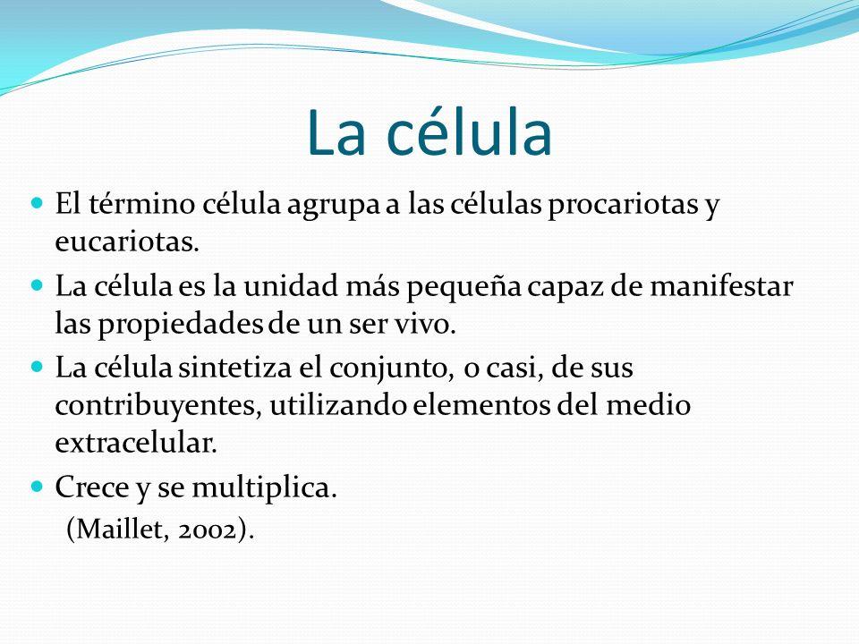 Célula Eucariota ESTRUCTURA Membrana plasmática Citoplasma Cito esqueleto Pared celular (sólo en las células de algas, hongos, plantas) ORGANELOS Núcleo Nucléolo Ribosomas Retículo endoplasmático Aparato de Golgi Mitocondrias Vacuolas Vesículas Lisosomas Centriolos (en la célula animal) Cloroplastos (sólo en las células de plantas y algas) Cromoplastos (sólo en las células de plantas y algas)