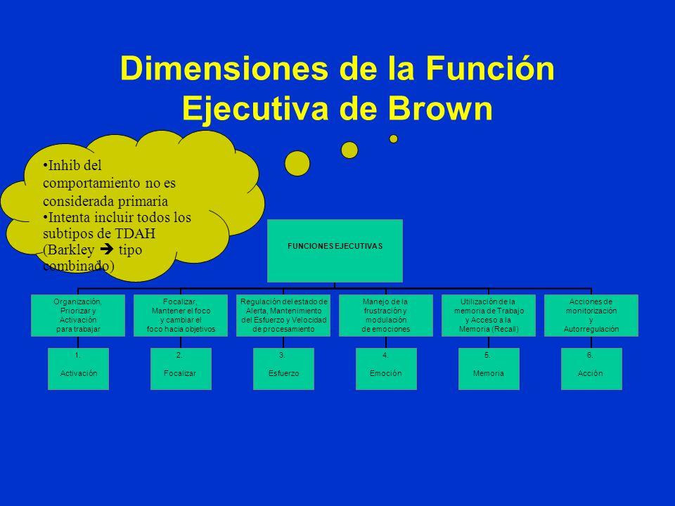 Funciones Ejecutivas Inicio y control general de la ejecución de acciones deliberadas Inicio y control de los comportamientos dirigidos a una meta con