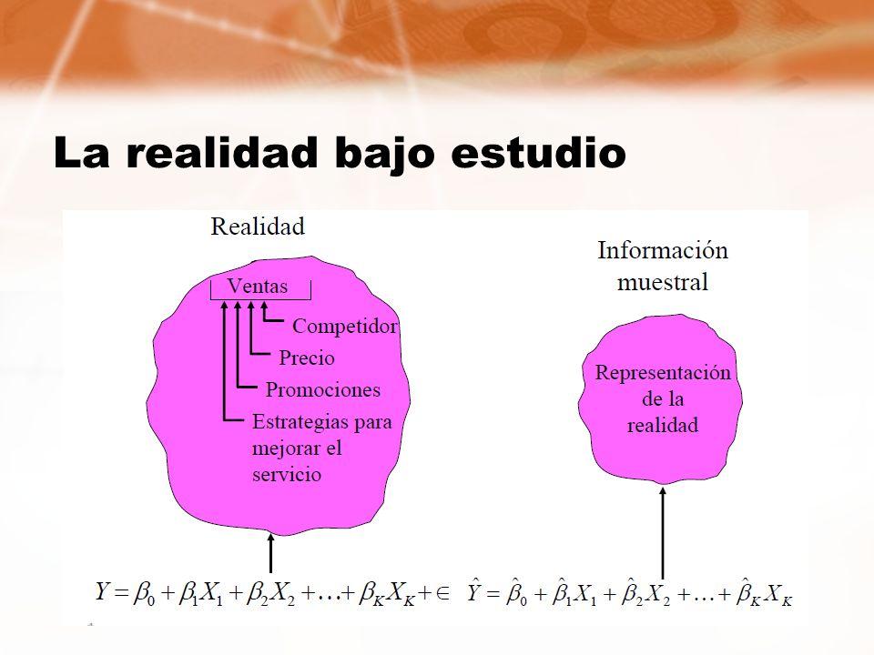 La realidad bajo estudio