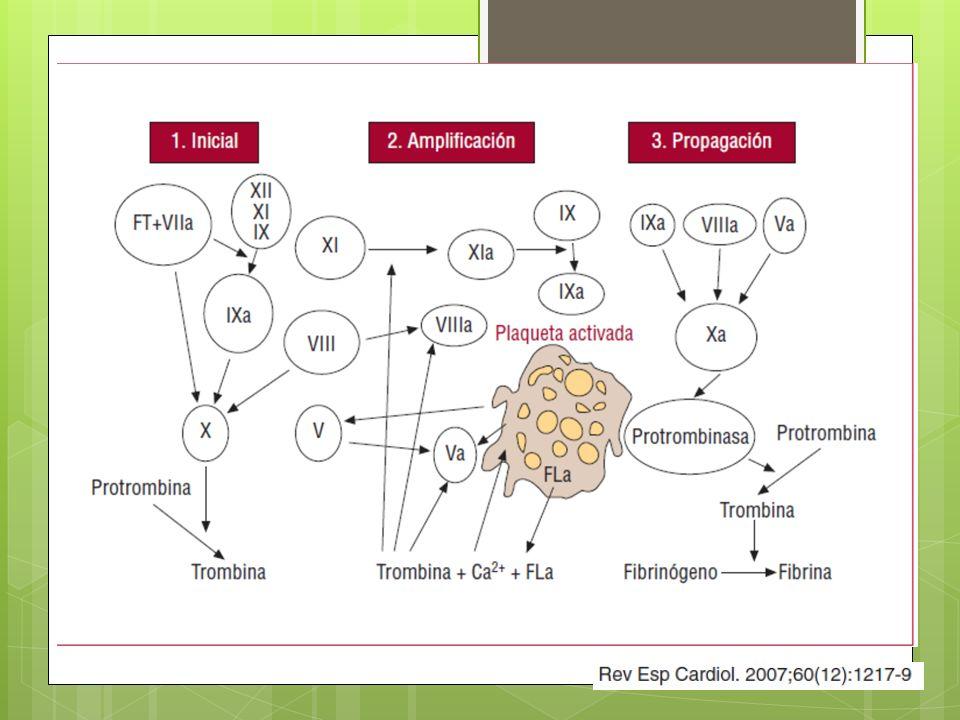 Manejo Perioperatorio Anticoagulación y antiagregación Clopidogrel Inhibe selectiva e irreversiblemente unión ADP al receptor plaquetario y la activación del complejo GPIIb-IIIa impidiendo la agregación La dosis habitual es de 75 mg/día.