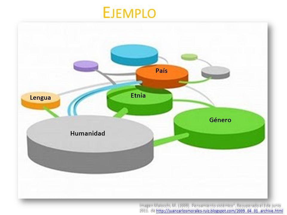 E JEMPLO Humanidad Género Etnia Lengua País Imagen Maiocchi, M. (2009). Pensamiento sistémico. Recuperado el 3 de junio 2011. de http://juancarlosmora
