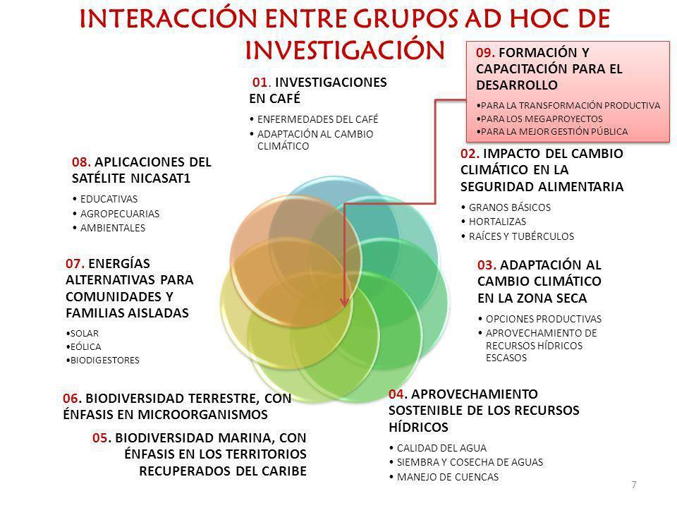 INTERACCIÓN ENTRE GRUPOS AD HOC DE INVESTIGACIÓN 01. INVESTIGACIONES EN CAFÉ ENFERMEDADES DEL CAFÉ ADAPTACIÓN AL CAMBIO CLIMÁTICO 02. IMPACTO DEL CAMB