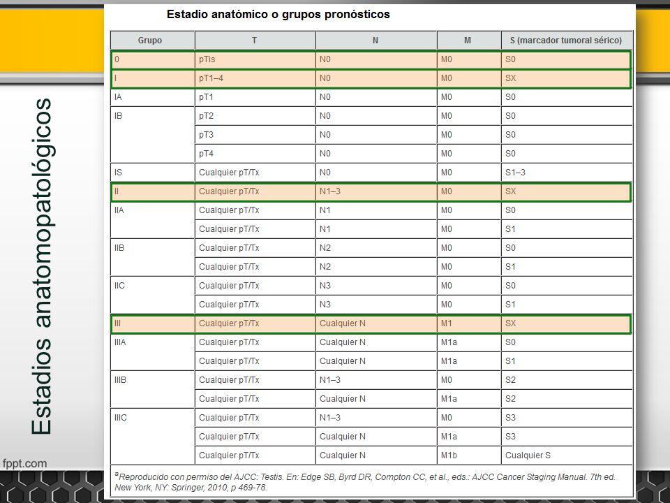 Estadios anatómicos o grupos pronósticos