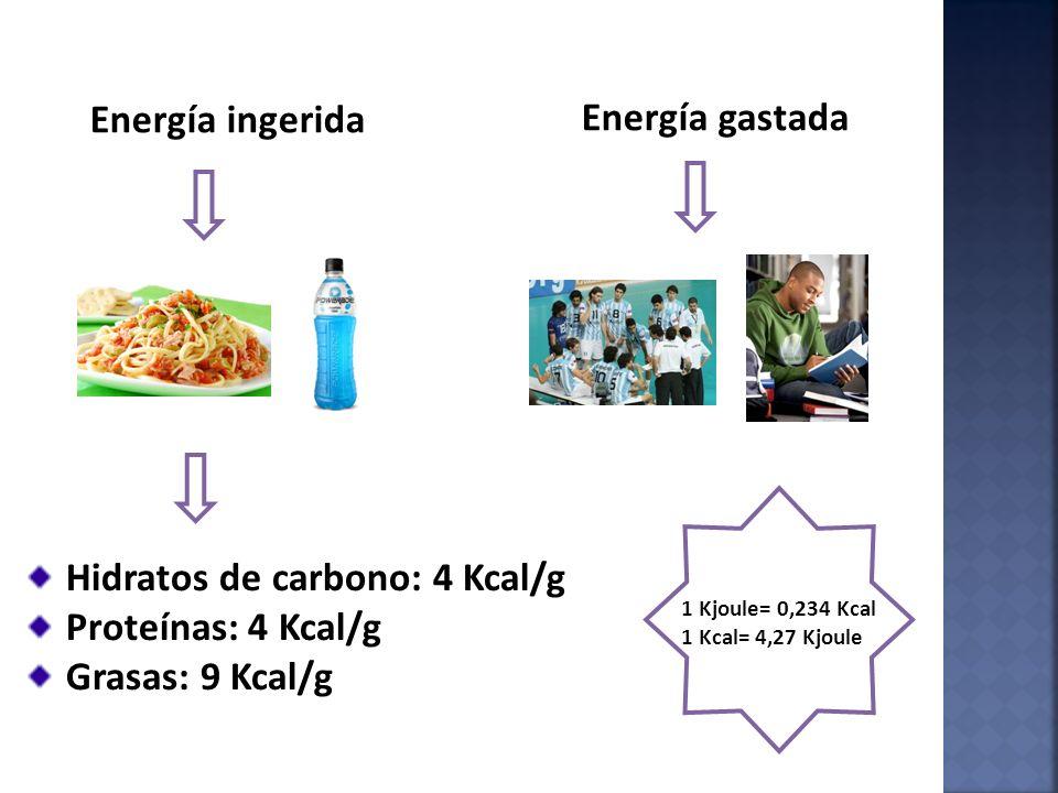 1 Kjoule= 0,234 Kcal 1 Kcal= 4,27 Kjoule Energía ingerida Energía gastada Hidratos de carbono: 4 Kcal/g Proteínas: 4 Kcal/g Grasas: 9 Kcal/g