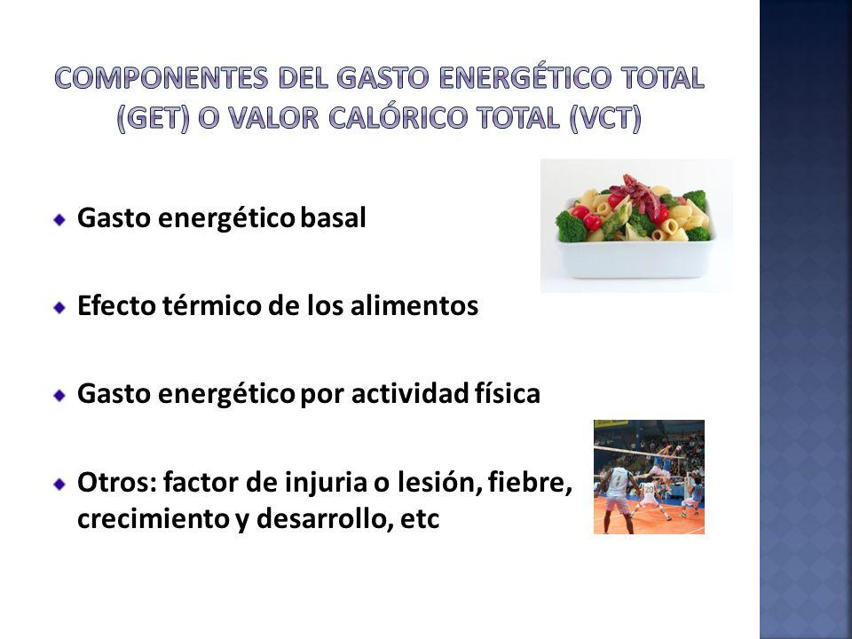 Gasto energético basal Efecto térmico de los alimentos Gasto energético por actividad física Otros: factor de injuria o lesión, fiebre, crecimiento y