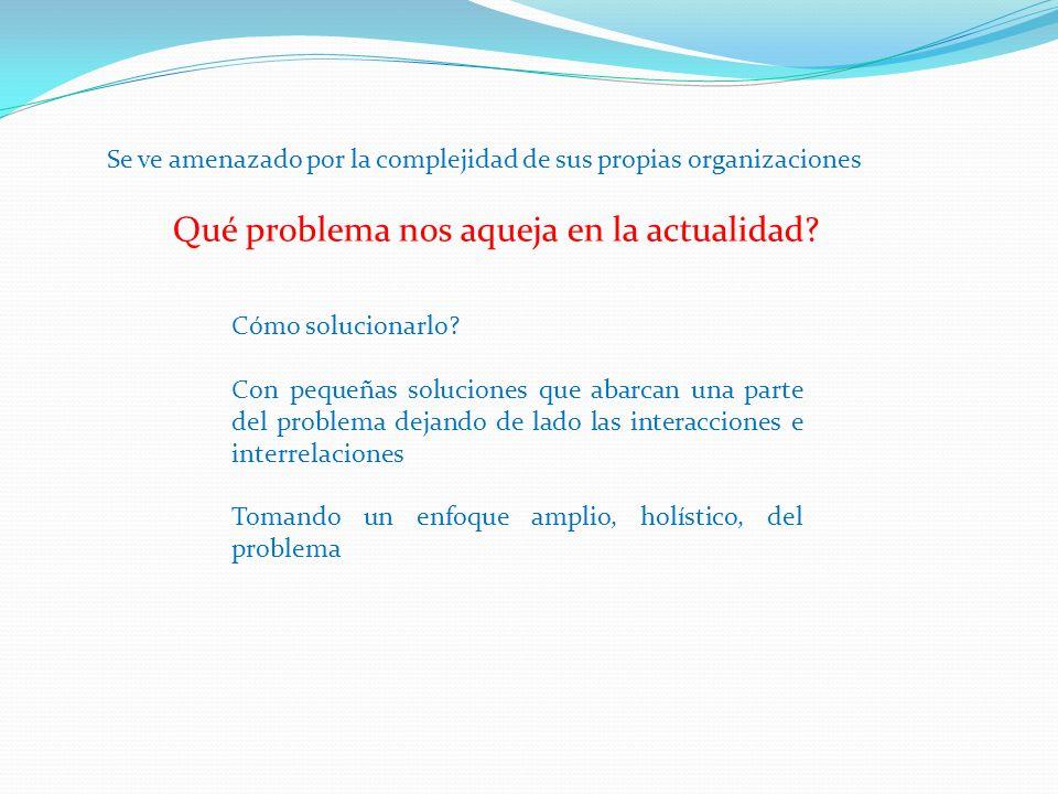 En el Enfoque de Sistemas Las soluciones deben tener éxito para toda la gente, tomando en cuenta su afiliación política, geográfica, etc.