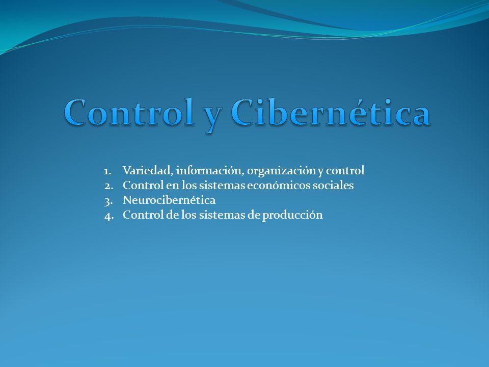 1.Variedad, información, organización y control 2.Control en los sistemas económicos sociales 3.Neurocibernética 4.Control de los sistemas de producción