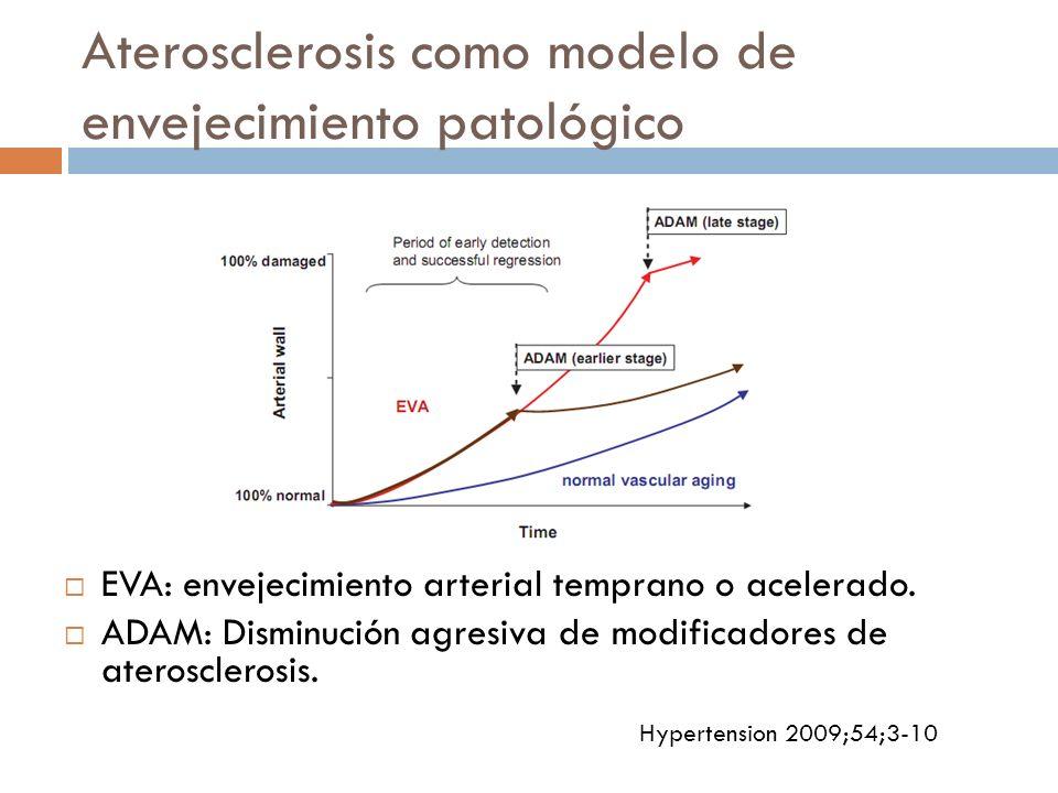 Aterosclerosis como modelo de envejecimiento patológico EVA: envejecimiento arterial temprano o acelerado. ADAM: Disminución agresiva de modificadores