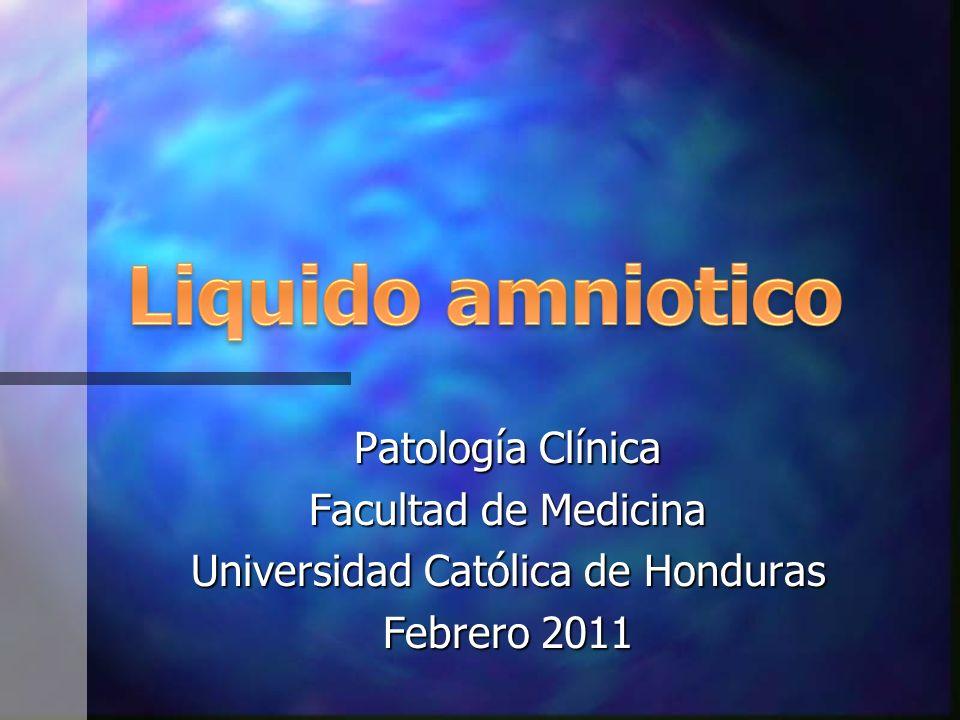 Patología Clínica Facultad de Medicina Universidad Católica de Honduras Febrero 2011
