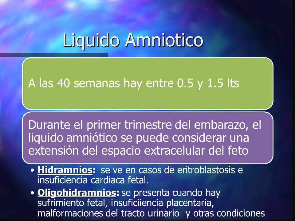 Liquido Amniotico A las 40 semanas hay entre 0.5 y 1.5 lts Durante el primer trimestre del embarazo, el liquido amniótico se puede considerar una extensión del espacio extracelular del feto HidramniosHidramnios: se ve en casos de eritroblastosis e insuficiencia cardiaca fetal.
