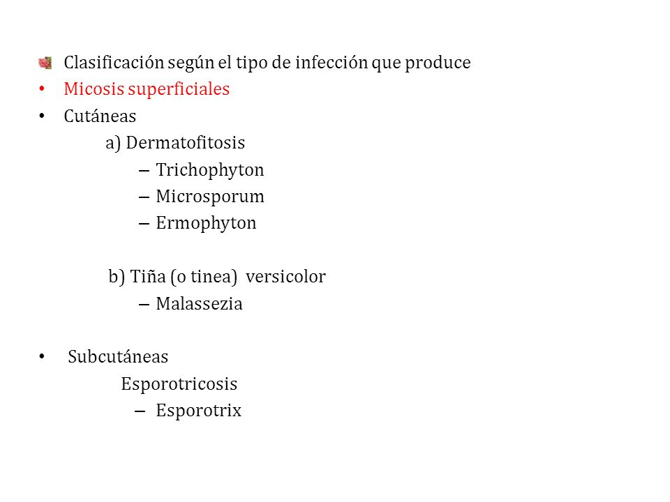 Clasificación según el tipo de infección que produce Micosis superficiales Cutáneas a) Dermatofitosis – Trichophyton – Microsporum – Ermophyton b) Tiñ