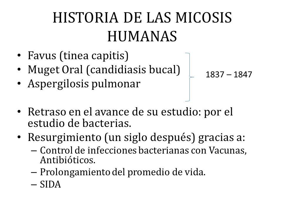 HISTORIA DE LAS MICOSIS HUMANAS Favus (tinea capitis) Muget Oral (candidiasis bucal) Aspergilosis pulmonar Retraso en el avance de su estudio: por el