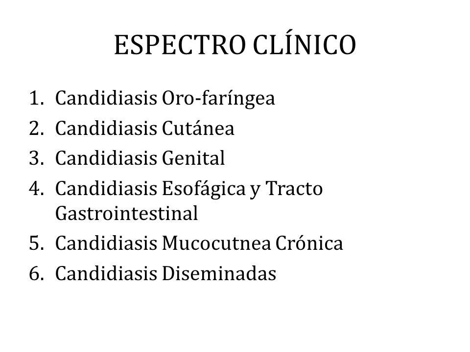 ESPECTRO CLÍNICO 1.Candidiasis Oro-faríngea 2.Candidiasis Cutánea 3.Candidiasis Genital 4.Candidiasis Esofágica y Tracto Gastrointestinal 5.Candidiasi