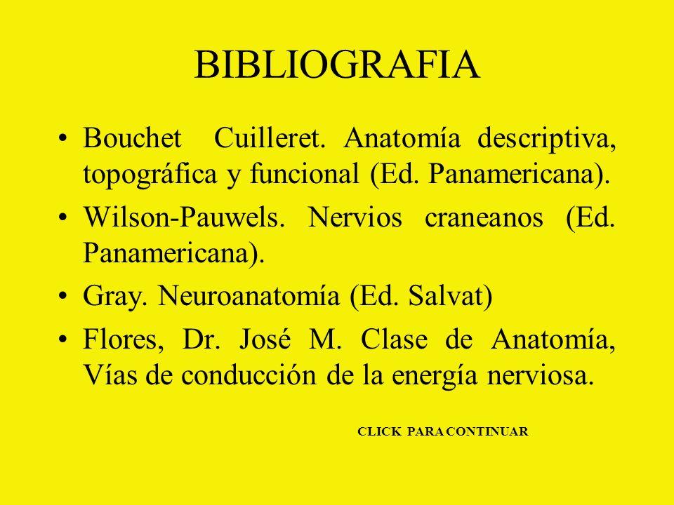 BIBLIOGRAFIA Bouchet Cuilleret.Anatomía descriptiva, topográfica y funcional (Ed.