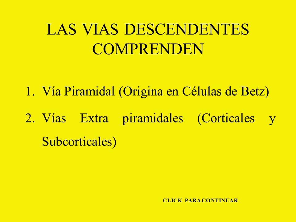 LAS VIAS DESCENDENTES COMPRENDEN 1.Vía Piramidal (Origina en Células de Betz) 2.Vías Extra piramidales (Corticales y Subcorticales) CLICK PARA CONTINUAR