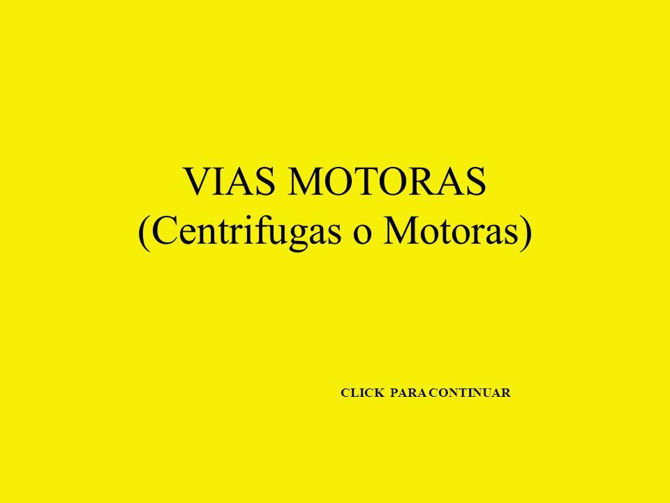 VIAS MOTORAS (Centrifugas o Motoras) CLICK PARA CONTINUAR