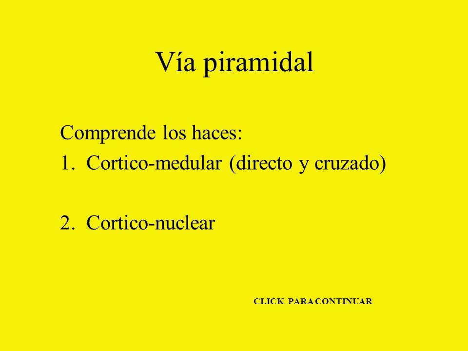 Vía piramidal Comprende los haces: 1.Cortico-medular (directo y cruzado) 2.Cortico-nuclear CLICK PARA CONTINUAR