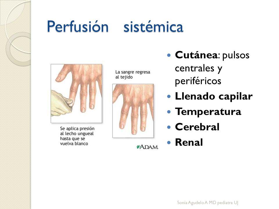 Perfusión sistémica Cutánea: pulsos centrales y periféricos Llenado capilar Temperatura Cerebral Renal Sonia Agudelo A MD pediatra UJ