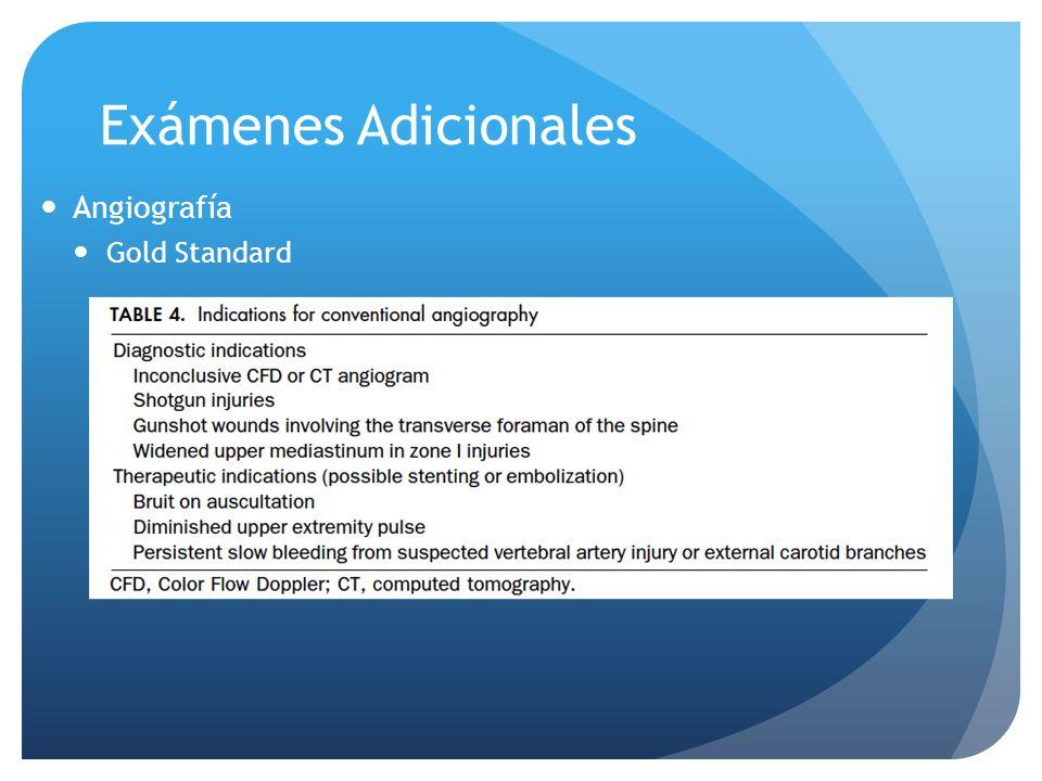 Exámenes Adicionales Angiografía Gold Standard