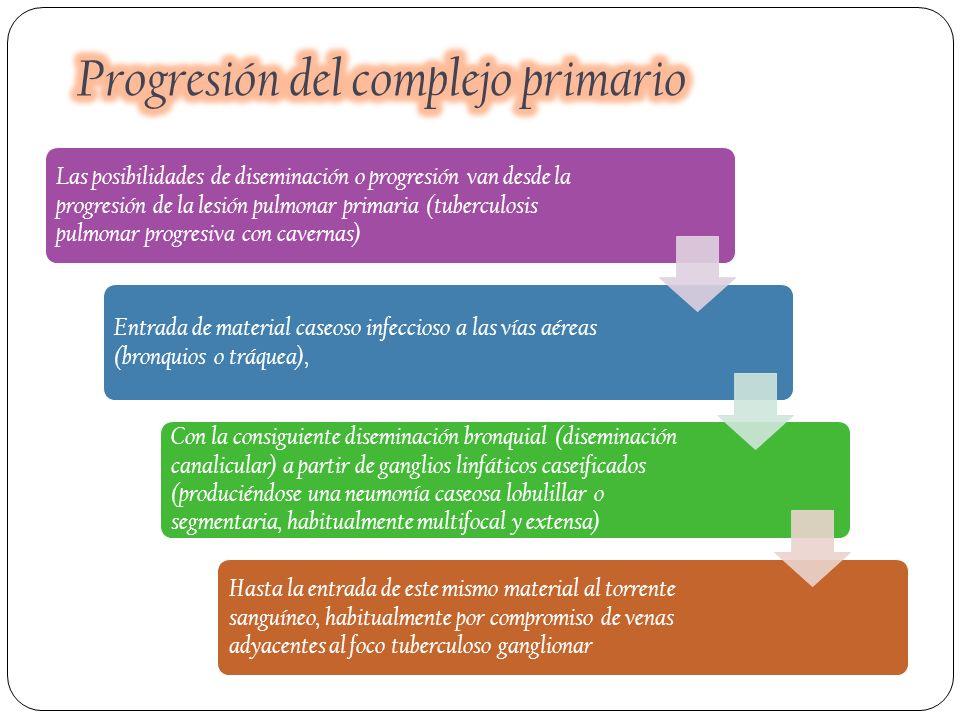 Las posibilidades de diseminación o progresión van desde la progresión de la lesión pulmonar primaria (tuberculosis pulmonar progresiva con cavernas)