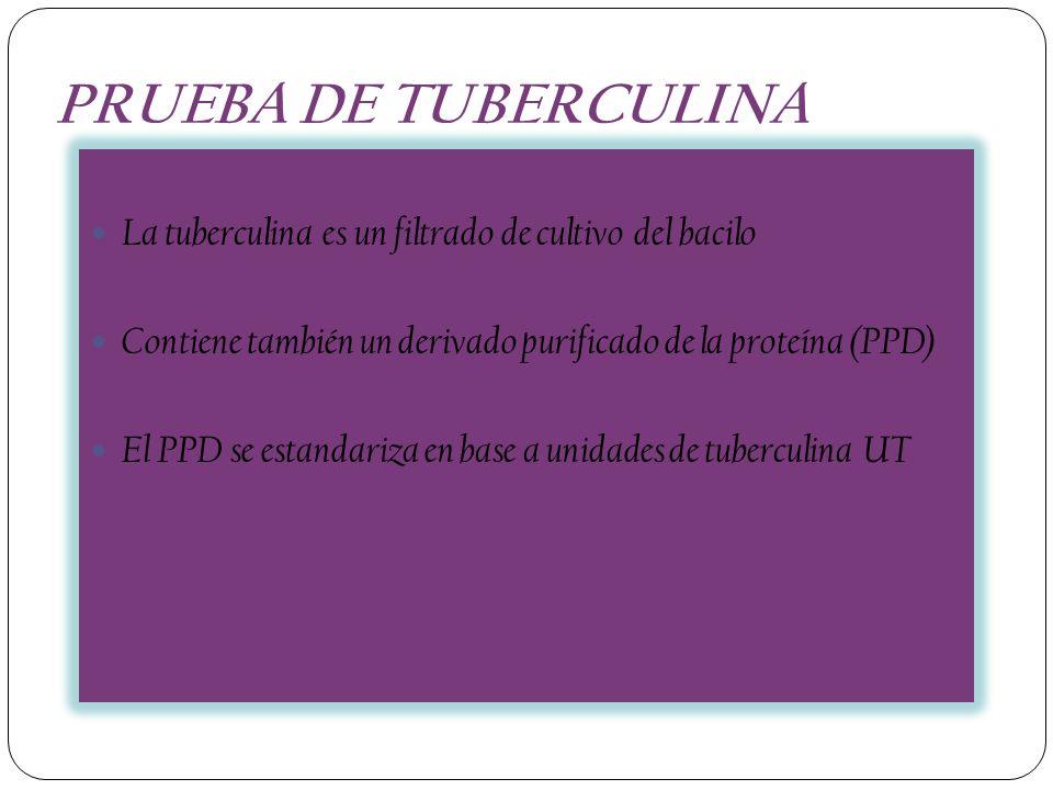 PRUEBA DE TUBERCULINA La tuberculina es un filtrado de cultivo del bacilo Contiene también un derivado purificado de la proteína (PPD) El PPD se estan