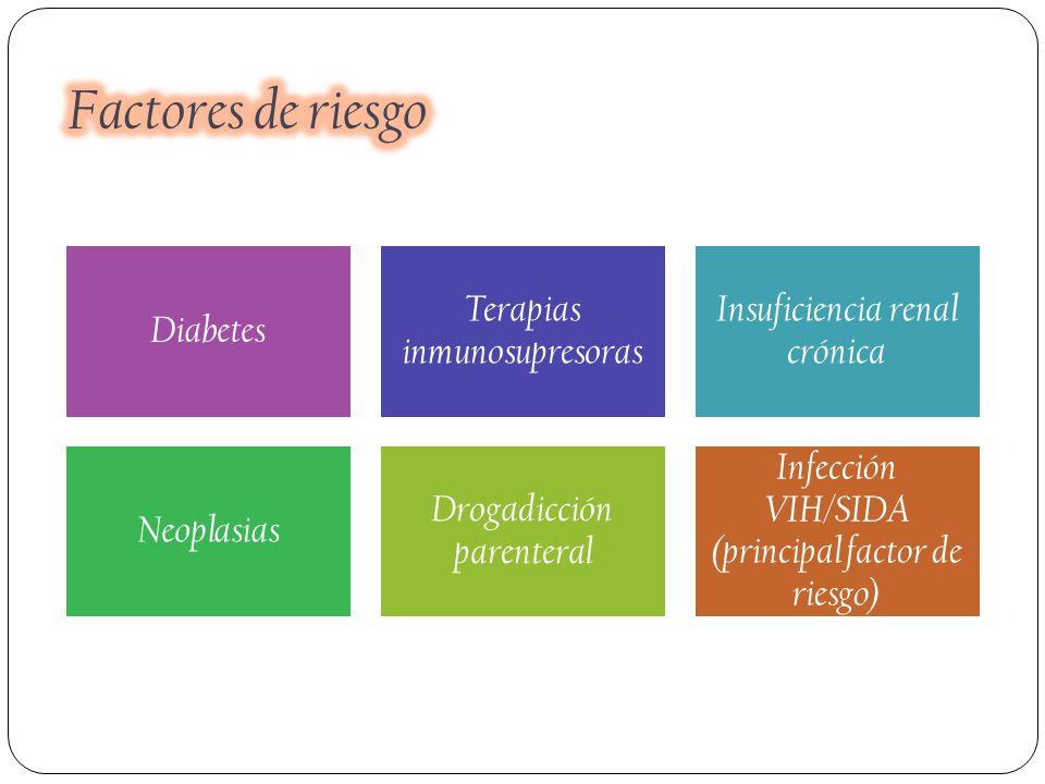 Diabetes Terapias inmunosupresoras Insuficiencia renal crónica Neoplasias Drogadicción parenteral Infección VIH/SIDA (principal factor de riesgo)