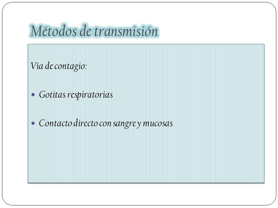 Vía de contagio: Gotitas respiratorias Contacto directo con sangre y mucosas Vía de contagio: Gotitas respiratorias Contacto directo con sangre y muco