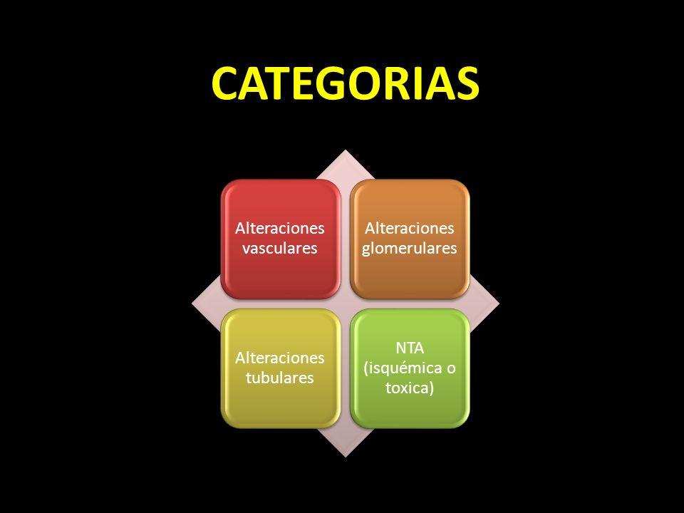 CATEGORIAS Alteraciones vasculares Alteraciones glomerulares Alteraciones tubulares NTA (isquémica o toxica)