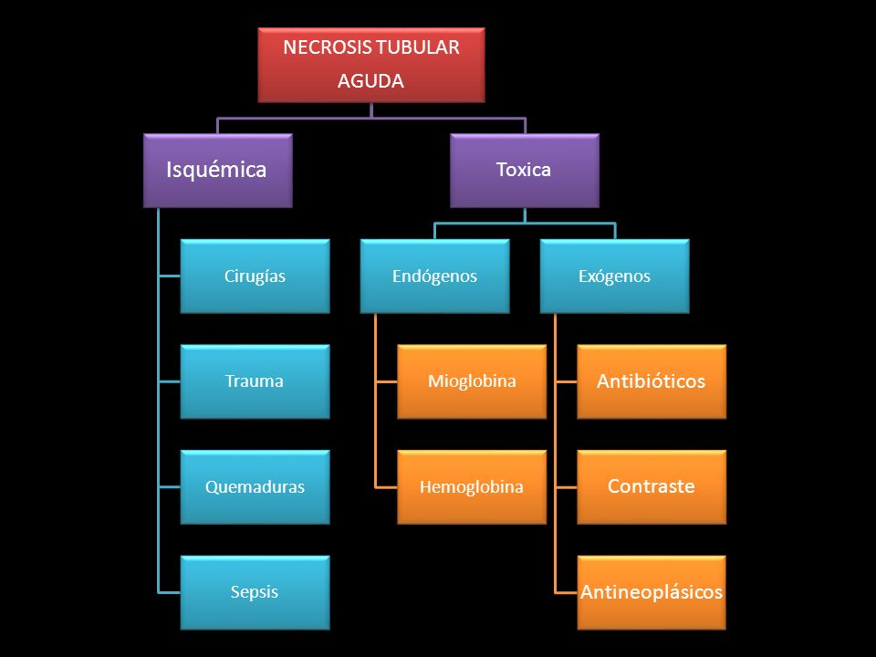NECROSIS TUBULAR AGUDA Isquémica Cirugías Trauma Quemaduras Sepsis Toxica Endógenos Mioglobina Hemoglobina Exógenos Antibióticos Contraste Antineoplás