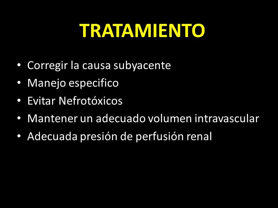 TRATAMIENTO Corregir la causa subyacente Manejo especifico Evitar Nefrotóxicos Mantener un adecuado volumen intravascular Adecuada presión de perfusió