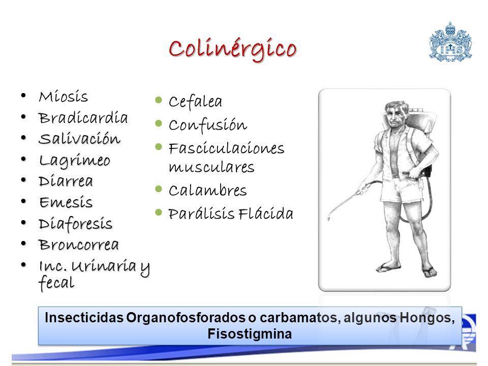 Colinérgico Miosis Bradicardia Salivación Salivación Lagrimeo Lagrimeo Diarrea Diarrea Emesis Emesis Diaforesis Diaforesis Broncorrea Broncorrea Inc.