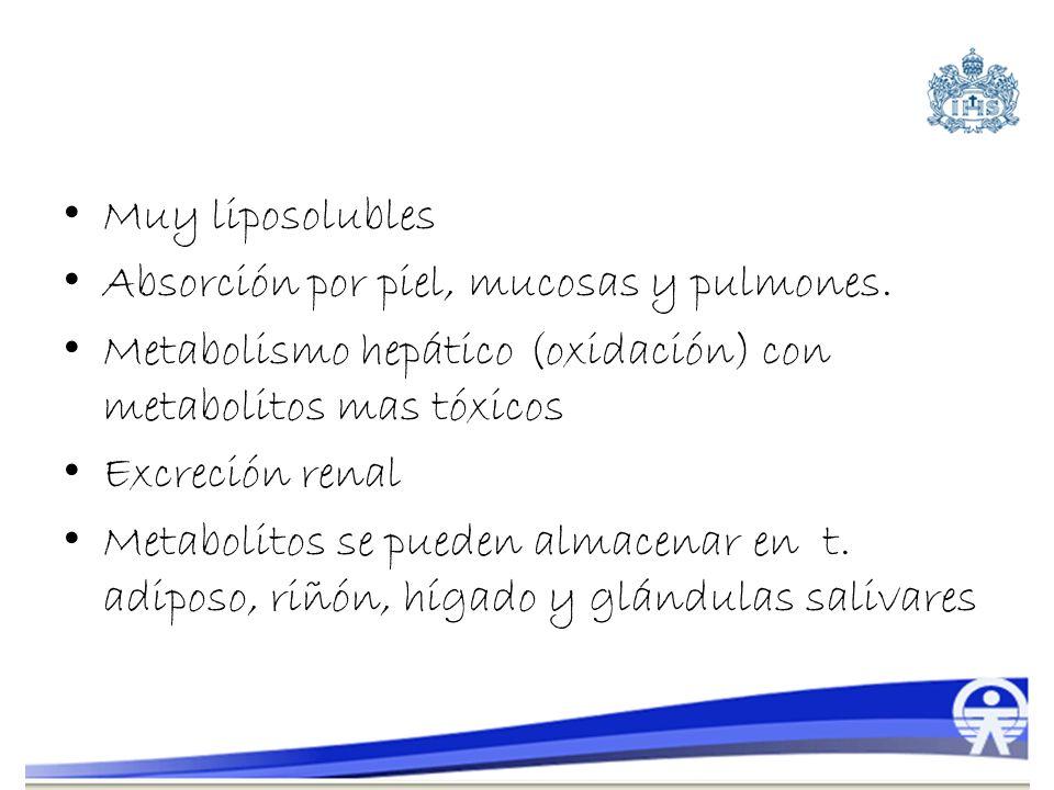 Muy liposolubles Absorción por piel, mucosas y pulmones. Metabolismo hepático (oxidación) con metabolitos mas tóxicos Excreción renal Metabolitos se p