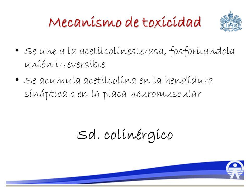 Mecanismo de toxicidad Se une a la acetilcolinesterasa, fosforilandola unión irreversible Se acumula acetilcolina en la hendidura sináptica o en la pl