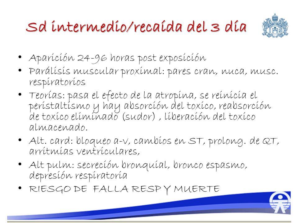 Sd intermedio/recaída del 3 día Aparición 24-96 horas post exposición Parálisis muscular proximal: pares cran, nuca, musc. respiratorios Teorías: pasa