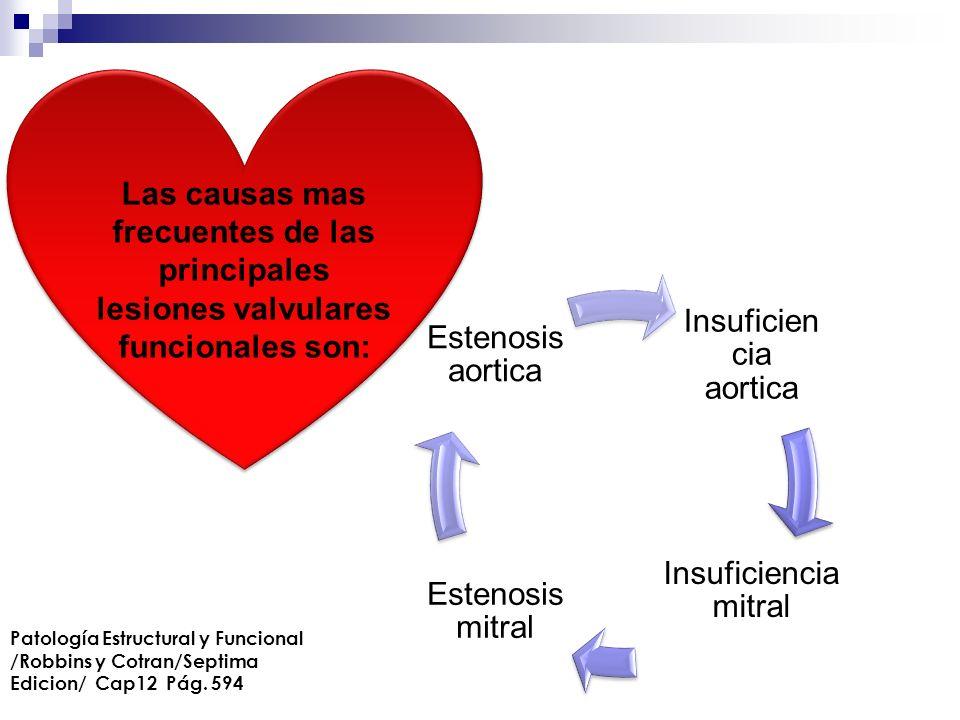 Las causas mas frecuentes de las principales lesiones valvulares funcionales son: Insuficien cia aortica Insuficiencia mitral Estenosis mitral Estenos