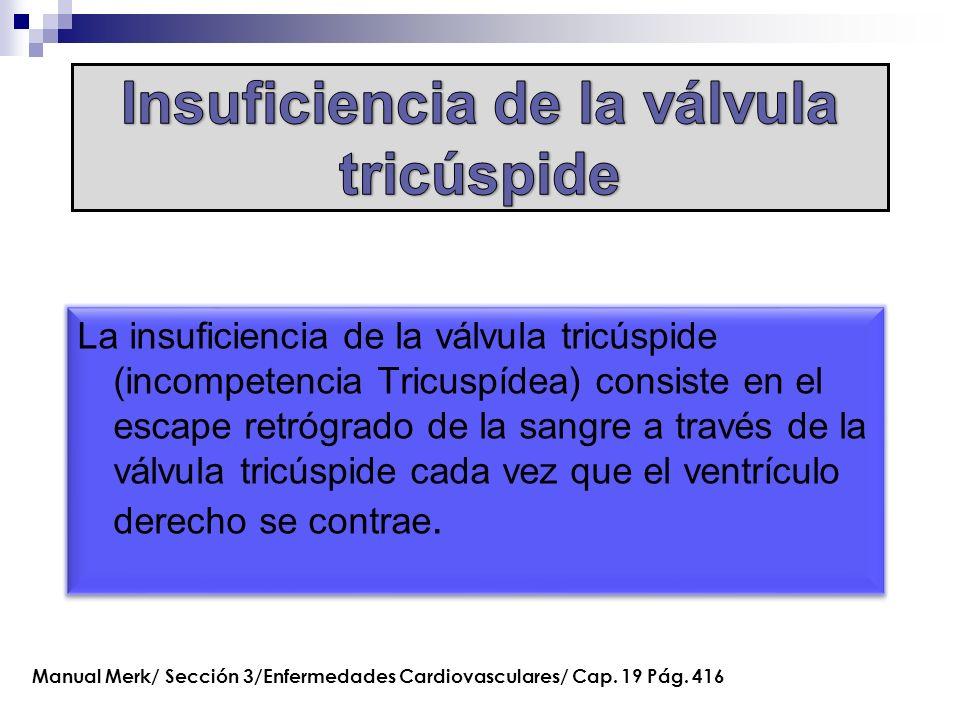 La insuficiencia de la válvula tricúspide (incompetencia Tricuspídea) consiste en el escape retrógrado de la sangre a través de la válvula tricúspide