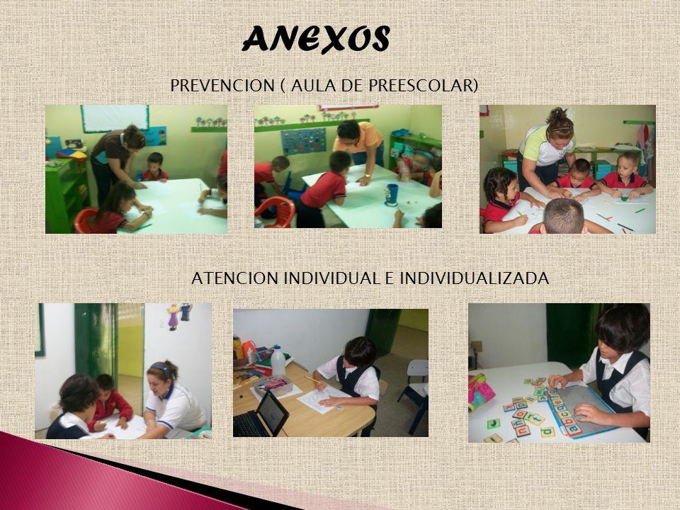 ANEXOS PREVENCION ( AULA DE PREESCOLAR) ATENCION INDIVIDUAL E INDIVIDUALIZADA
