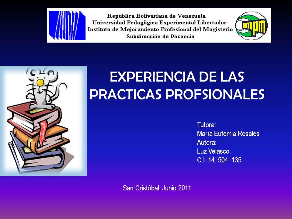 EXPERIENCIA DE LAS PRACTICAS PROFSIONALES Tutora: María Eufemia Rosales Autora: Luz Velasco. C.I: 14. 504. 135 San Cristóbal, Junio 2011