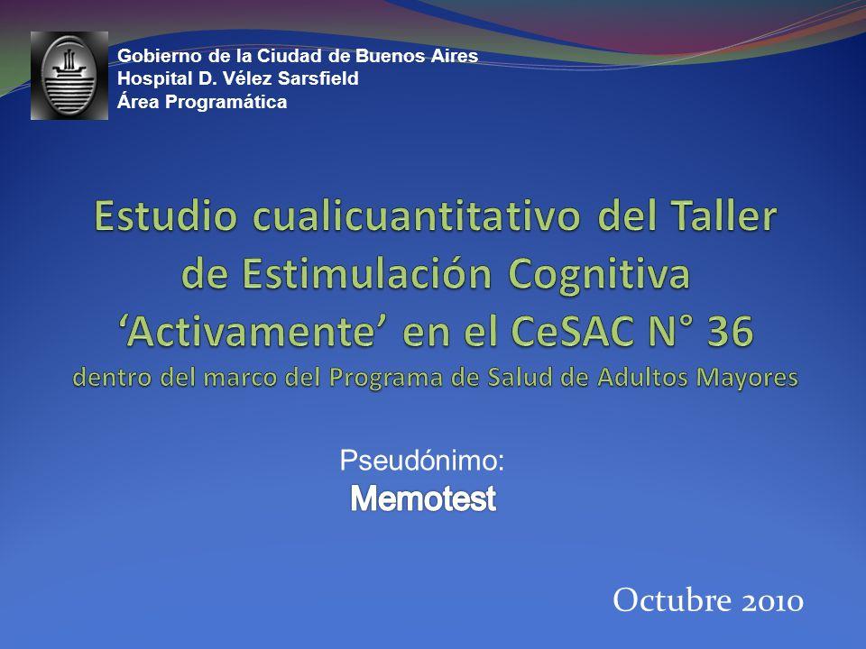 Octubre 2010 Gobierno de la Ciudad de Buenos Aires Hospital D. Vélez Sarsfield Área Programática