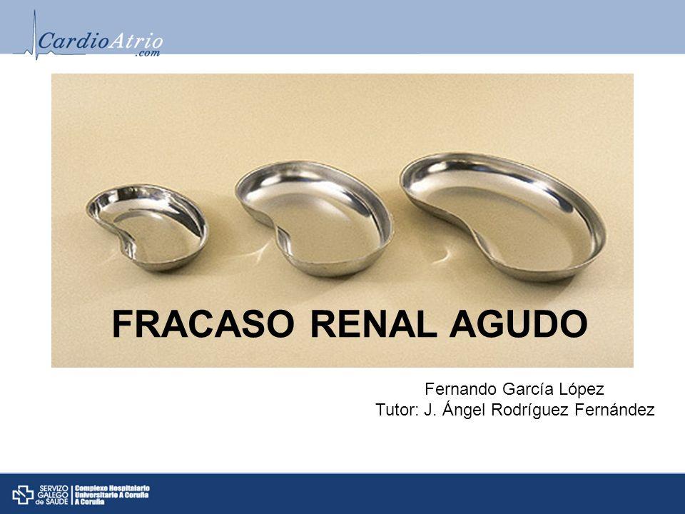Fernando García López Tutor: J. Ángel Rodríguez Fernández FRACASO RENAL AGUDO