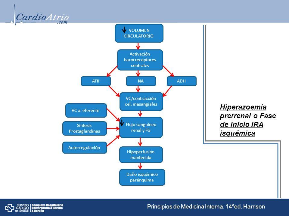 VOLUMEN CIRCULATORIO Activación barorreceptores centrales NA Flujo sanguíneo renal y FG Hipoperfusión mantenida Daño isquémico parénquima VC/contracci