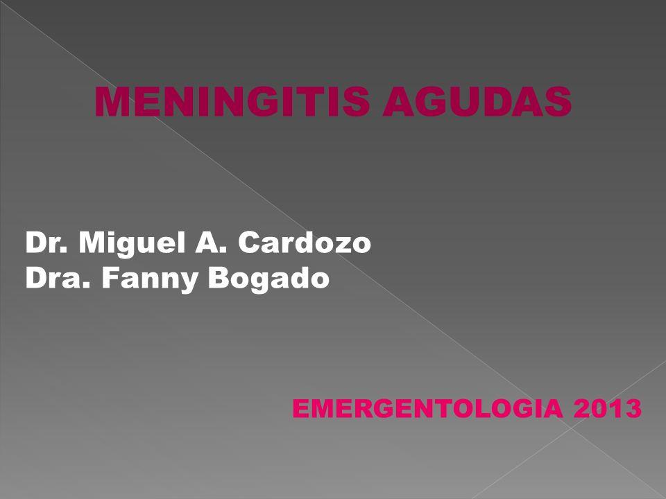 MENINGITIS AGUDAS Dr. Miguel A. Cardozo Dra. Fanny Bogado EMERGENTOLOGIA 2013
