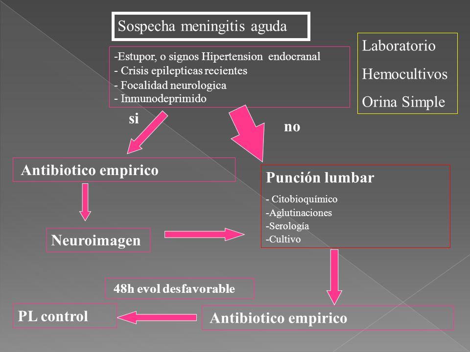Sospecha meningitis aguda Neuroimagen Punción lumbar - Citobioquímico -Aglutinaciones -Serología -Cultivo Laboratorio Hemocultivos Orina Simple -Estup