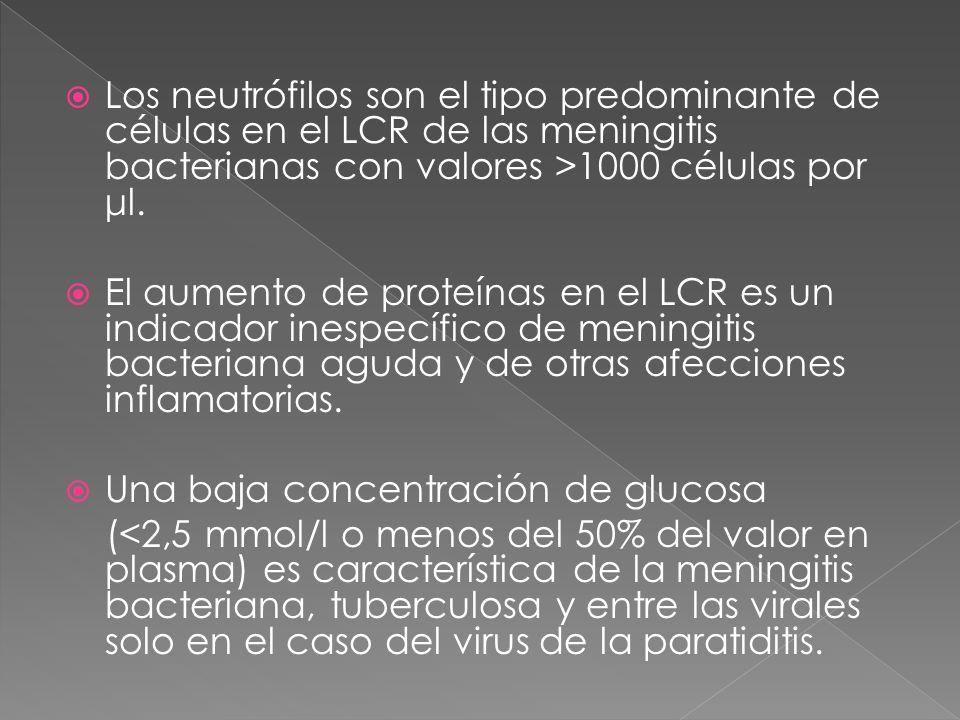 Los neutrófilos son el tipo predominante de células en el LCR de las meningitis bacterianas con valores >1000 células por μl. El aumento de proteínas