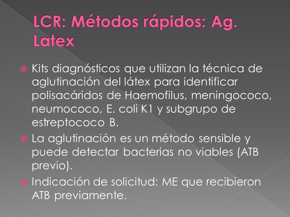 Kits diagnósticos que utilizan la técnica de aglutinación del látex para identificar polisacáridos de Haemofilus, meningococo, neumococo, E. coli K1 y