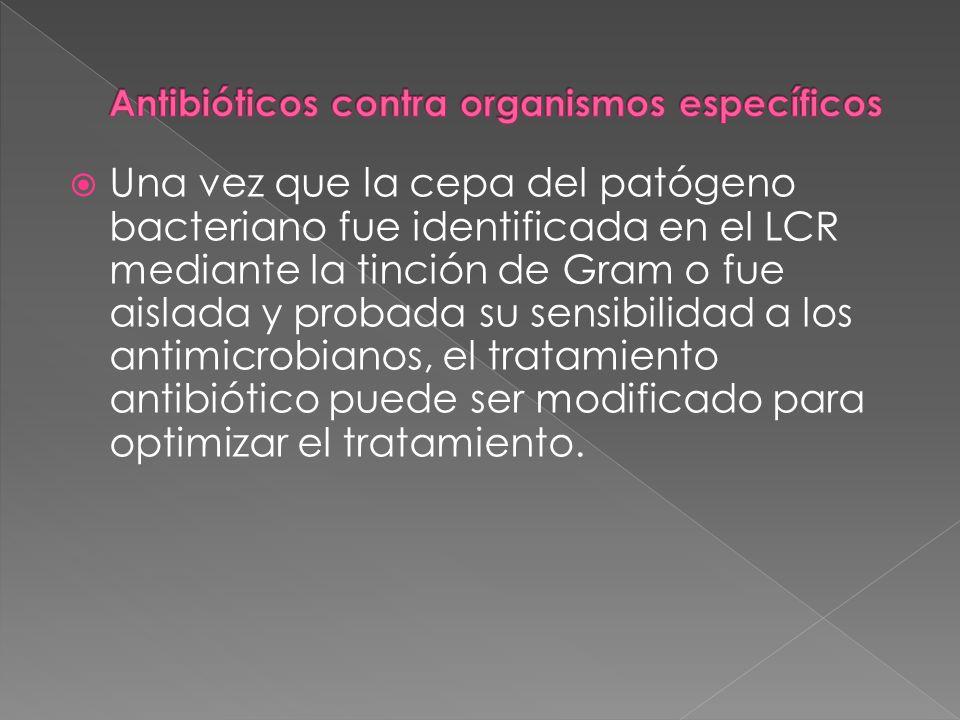 Una vez que la cepa del patógeno bacteriano fue identificada en el LCR mediante la tinción de Gram o fue aislada y probada su sensibilidad a los antim