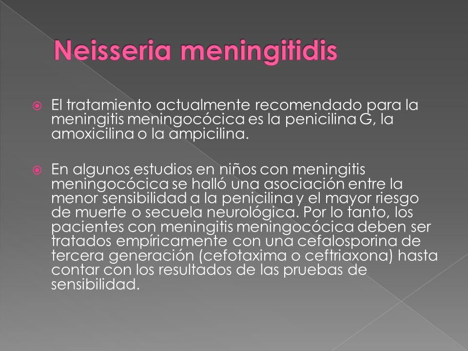 El tratamiento actualmente recomendado para la meningitis meningocócica es la penicilina G, la amoxicilina o la ampicilina. En algunos estudios en niñ