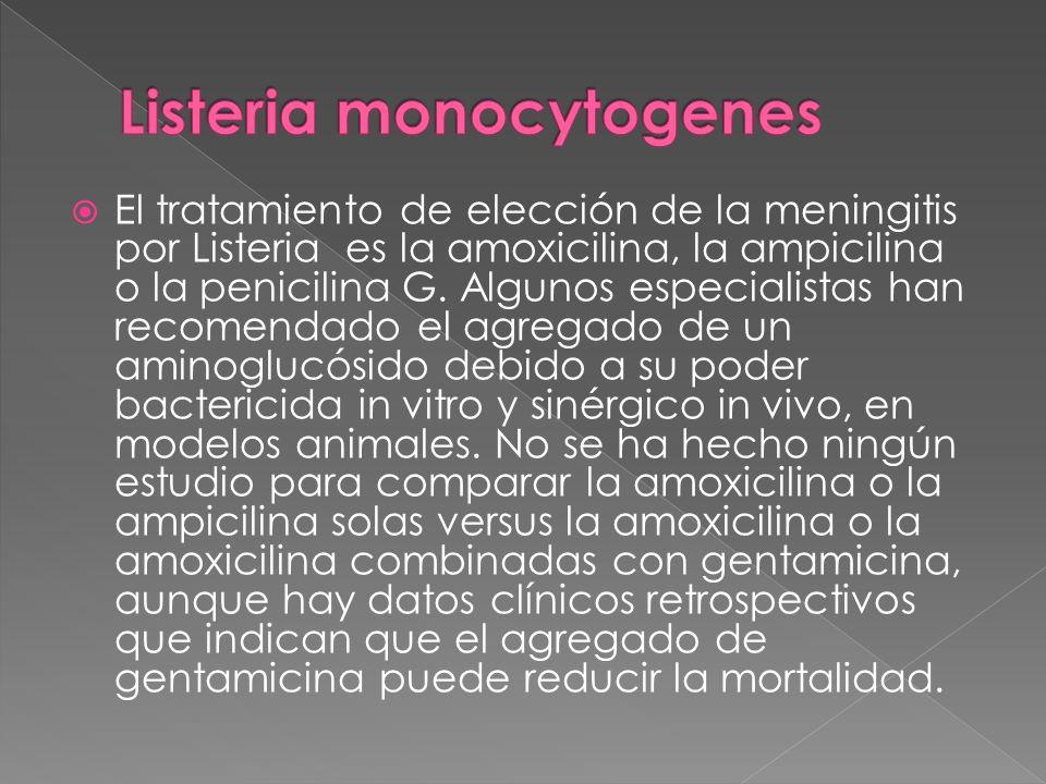 El tratamiento de elección de la meningitis por Listeria es la amoxicilina, la ampicilina o la penicilina G. Algunos especialistas han recomendado el