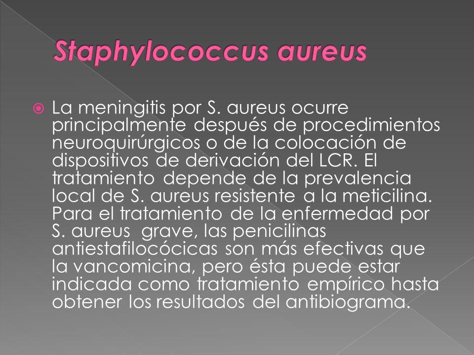 La meningitis por S. aureus ocurre principalmente después de procedimientos neuroquirúrgicos o de la colocación de dispositivos de derivación del LCR.